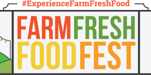 Hypitch Marketing Farm Fresh Food Festival